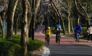 Reducerea poluarii aerului utilizand bicicleta ca mijloc de transport
