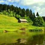 Roşia Montană, Tăul Brazi